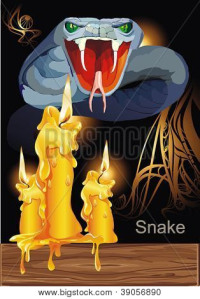 Bigstock_39056890 snake